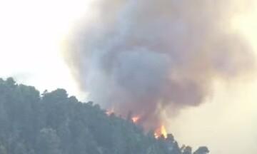 Η πυρκαγιά στην Εύβοια όπως τη βλέπει το drone της Πυροσβεστικής