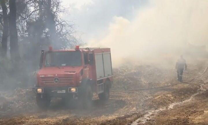 Οριοθετημένη η πυρκαγιά στην Εύβοια