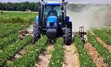 Τα μέτρα για τη στήριξη των αγροτών: Πότε θα δοθούν οι άμεσες ενισχύσεις