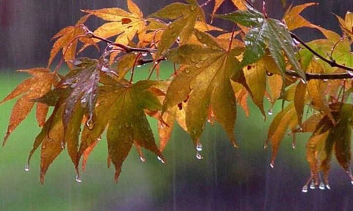 Σημαντική πτώση της θερμοκρασίας και βροχές από την Πέμπτη