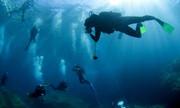 Ερχεται νομοσχέδιο για καταδυτικό τουρισμό και ρυθμίσεις για τη βραχυχρόνια μίσθωση
