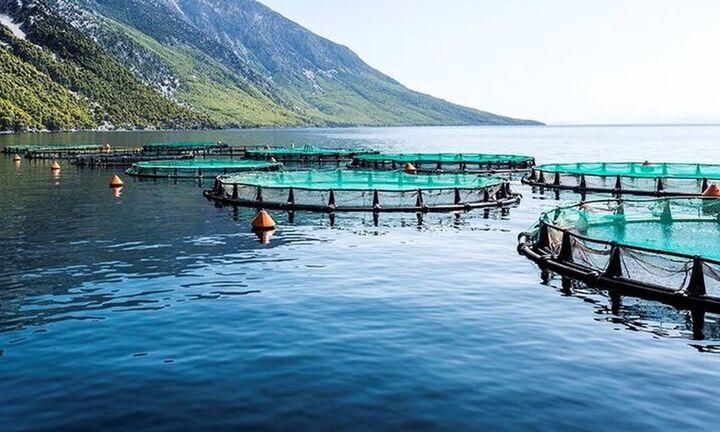 Επιπλέον 8 εκατ. ευρώ για επενδύσεις στην υδατοκαλλιέργεια