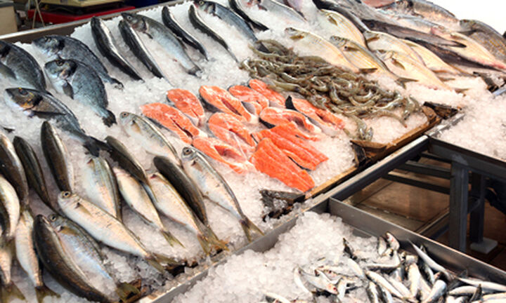 Τρώμε γαλέο ή μπλε καρχαρία;- Τι δείχνει έρευνα στην ελληνική αγορά