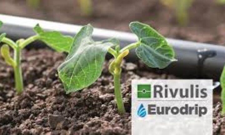 Συνεργασία της Rivulis-Eurodrip με την Jaffer Agro Services