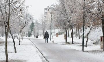 Ισχυρός παγετός: Στους -14 βαθμούς η θερμοκρασία στο Μαυρολιθάρι Φωκίδας