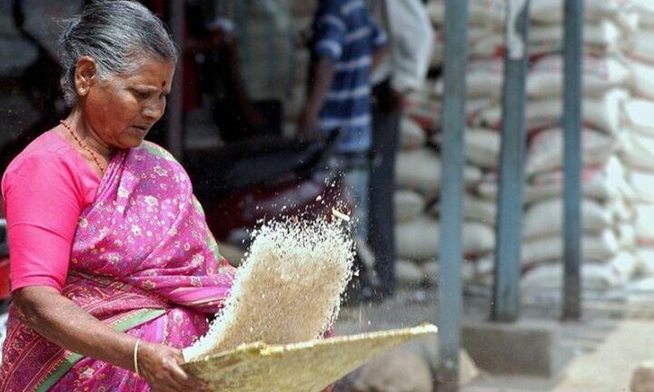 Διαβάστηκε το DNA του ρυζιού μπασμάτι