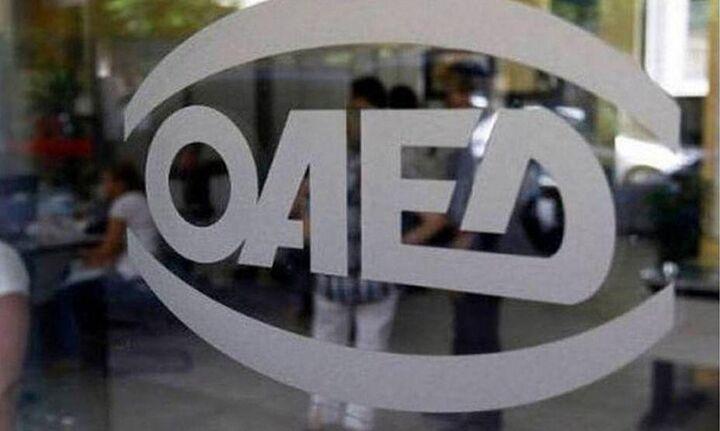 ΟΑΕΔ: Ως 28/2 οι αιτήσεις για τη νεανική επιχειρηματικότητα
