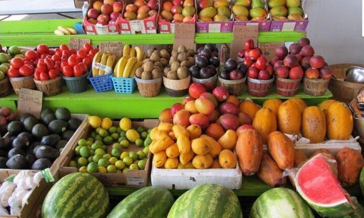Oι αγορές-στόχοι για δεκατρία αγροτικά προϊόντα