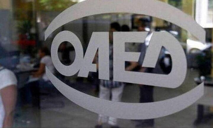 ΟΑΕΔ: Από την Τρίτη οι αιτήσεις για το Κατασκηνωτικό Πρόγραμμα 2020