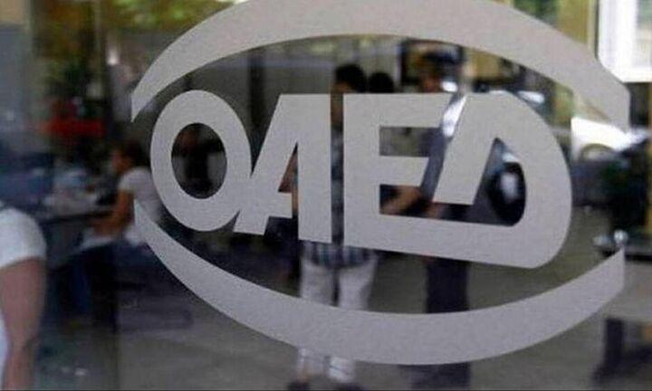 ΟΑΕΔ - κατασκηνωτικό πρόγραμμα: Μόνο ηλεκτρονικές αιτήσεις