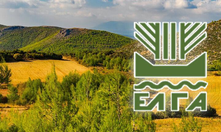 ΕΛΓΑ: Πιστώνονται την Παρασκευή 348.000 ευρώ σε 113 δικαιούχους