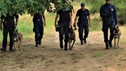 Δύο διαγωνισμοί για την πρόσληψη 746 συνοριακών φυλάκων, για νησιά, Αττική, Πελοπόνησσο, Δράμα και Ξ