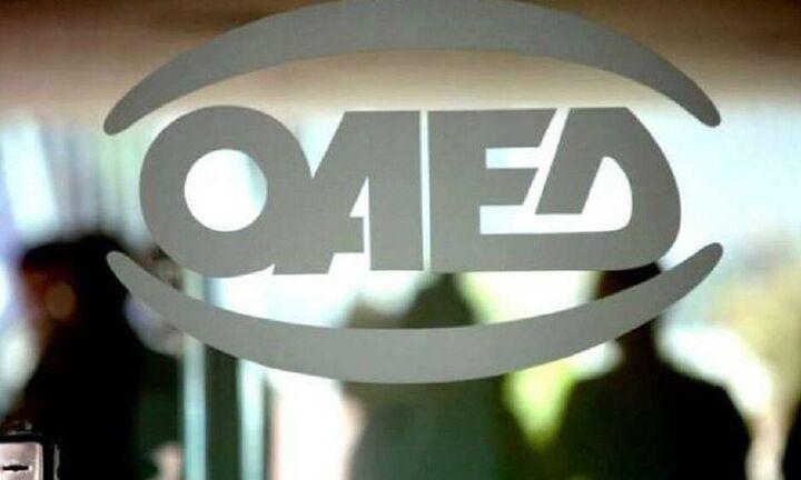 ΟΑΕΔ: Επιδοτούμενες θέσεις εργασίας για ανέργους σε δυο δήμους