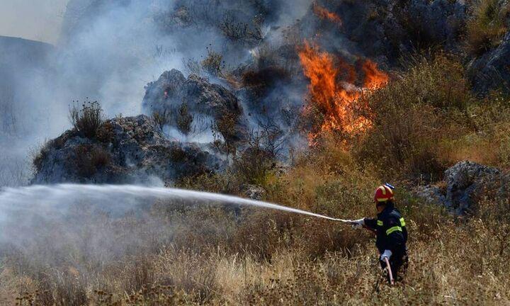 Πυρκαγιές σε Νέα Μάκρη και Καλύβια  - Ενισχύονται οι πυροσβεστικές δυνάμεις