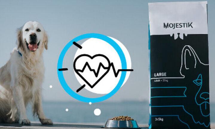 Mojestik: Τροφή για κατοικίδια με συνδρομή και ελληνική υπογραφή