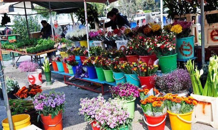 Κανονικά από σήμερα λουλούδια και φυτά στις λαϊκές αγορές