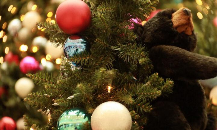 Σήμερα το Δώρο Χριστουγέννων - Τι προβλέπεται για όσους  βρίσκονται σε αναστολή