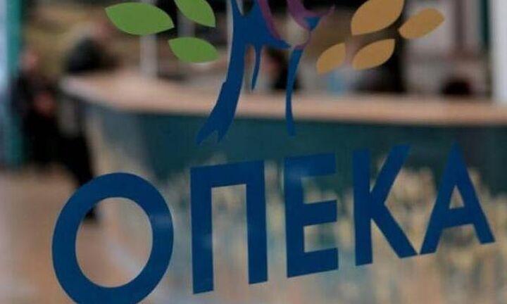 ΟΠΕΚΑ: Τα προγράμματα Λογαριασμού Αγροτικής Εστίας
