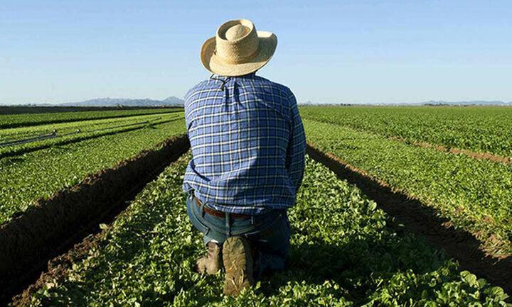ΥπΑΑΤ: Σε λειτουργία η ηλεκτρονική υπηρεσία έκδοσης βεβαίωσης Επαγγελματία Αγρότη