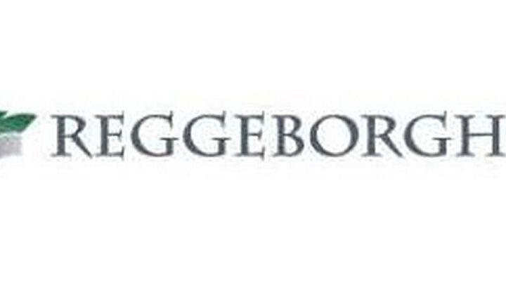 Την αποεπένδυσή της από την ΓΕΚ ΤΕΡΝΑ ανακοίνωσε η Reggeborgh Invest
