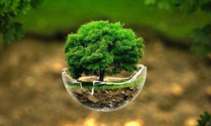 GreenTecLab: Εργαστήρια πράσινης επιχειρηματικότητας στην Κρήτη