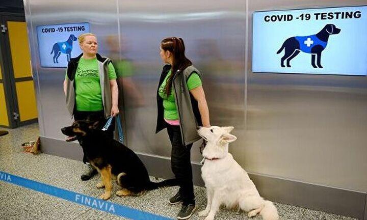 Ρωσία: Το πρώτο εμβόλιο Covid-19 για ζώα είναι γεγονός