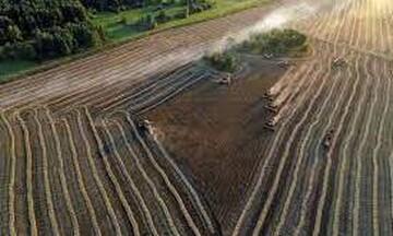 Ευρώπη: Τριπλασιάσθηκαν οι απώλειες στη συγκομιδή λόγω της ξηρασίας τα τελευταία 50 χρόνια