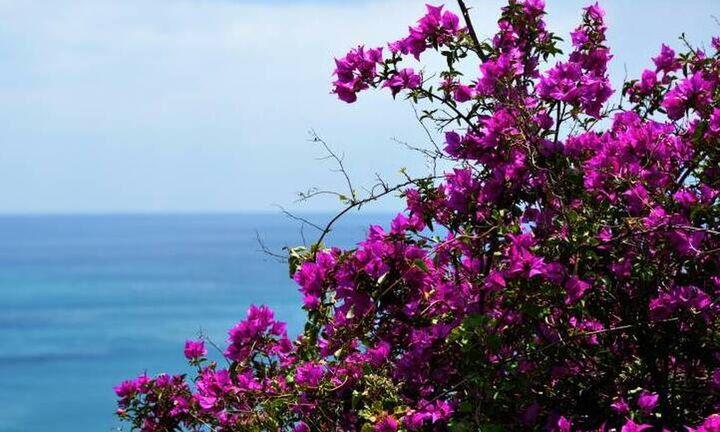 Μαρουσάκης: O καιρός την Μεγάλη Εβδομάδα και την Κυριακή του Πάσχα