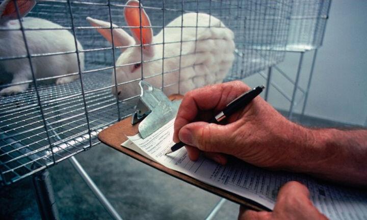 Ελαχιστοποίηση πειραμάτων σε ζώα - Εναλλακτικές μεθόδους αναζητά η Κομισιόν