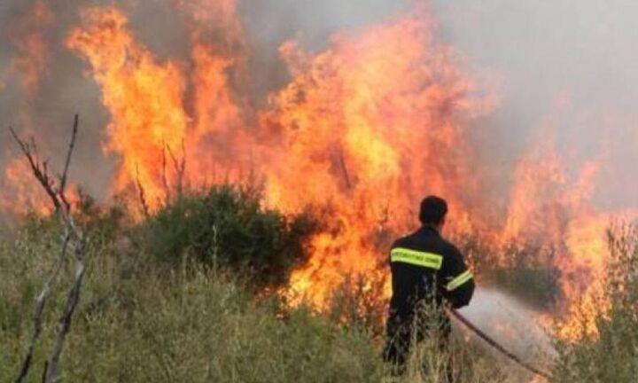 Κορωπί: Πυρκαγιά στην Αγία Μαρίνα Κορωπίου