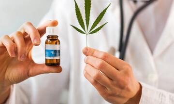 Σχέδιο νόμου για την φαρμακευτική κάνναβη