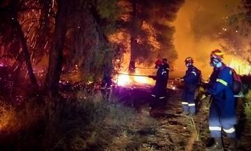 Ανεξέλεγκτη η πυρκαγιά στον Σχίνο Κορινθίας - Εκκενώθηκαν οικισμοί