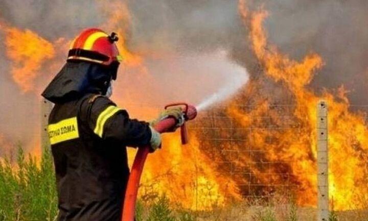 ΤΩΡΑ: Πυρκαγιά σε δασική έκταση στη Βοιωτία