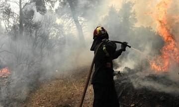 Ενεργοποιήθηκε το «112» για την απομάκρυνση κατοίκων λόγω της πυρκαγιάς στην Κορινθία