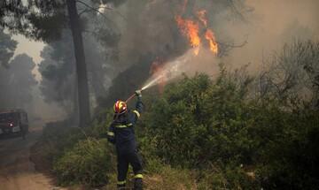 Πυρκαγιά στην Κορινθία: Μαίνεται η μάχη με τις φλόγες - Η φωτιά πλησιάζει το Αλεποχώρι