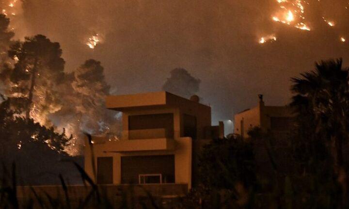 Στάχτη πάνω από 40.000 στρέμματα στη φωτιά στα Γεράνεια Όρη