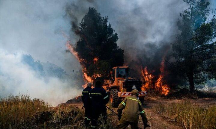 Νέα αναζωπύρωση της πυρκαγιάς στα Μέγαρα - Εκκενώνεται ο οικισμόςΠαπαγιαννέικα