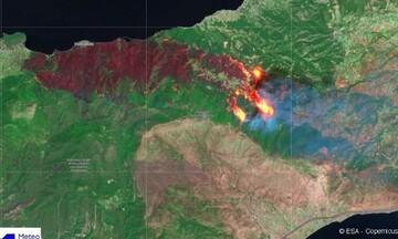 Την μεγάλη πυρκαγιά στην Κορινθία φωτογράφισε ο δορυφόρος Sentinel-2