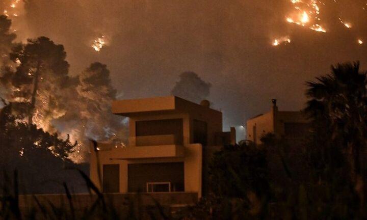 Φωτιά Γεράνεια Ορη: Το πακέτο στήριξης στους πυρόπληκτους - Αναδασωτέες οι καμένες εκτάσεις