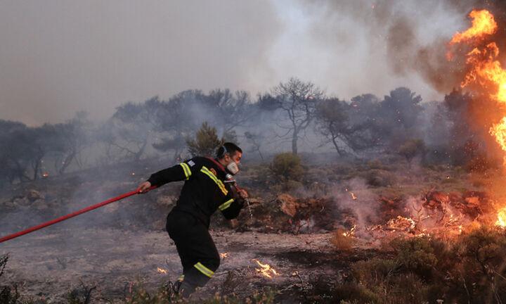 Φωτιά στην Κερατέα:Η πυρκαγιά καίει χορτολιβαδική έκταση