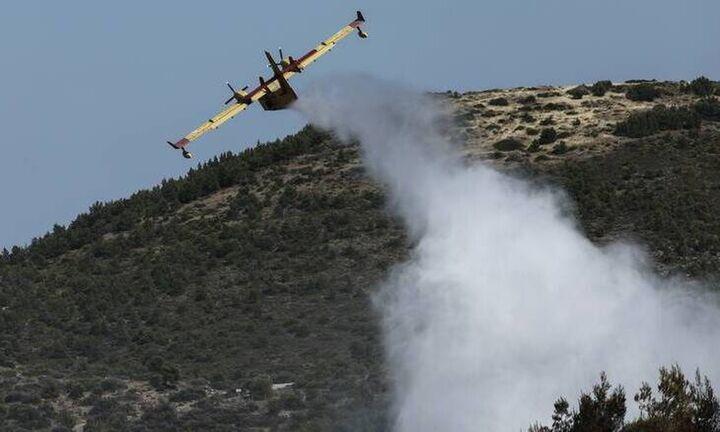 Υπό μερικό έλεγχο η πυρκαγιά στα Μέγαρα Αττικής