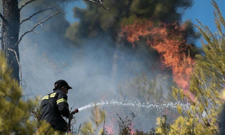 Υπό μερικό έλεγχο η πυρκαγιά σε υπαίθριο χώρο στα Καλύβια Αττικής