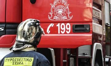Πυρκαγιά σε αγροτοδασική έκταση στο Ζέλι Φθιώτιδας