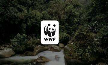 Κοινή πρόταση νόμου από WWF και 12 φορείς, για την κλιματική κρίση