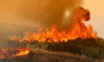 Γ.Γ. Πολιτικής Προστασίας: Σε ποιες περιοχές υπάρχει πολύ υψηλός κίνδυνος πυρκαγιάς την Πέμπτη