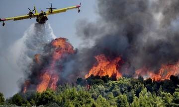 ΓΓΠΠ - Μεγάλη Προσοχή: Σε ποιες περιοχές της χώρας υπάρχει υψηλός κίνδυνος πυρκαγιάς την Παρασκευή