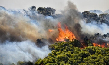 Μεγάλης έκτασης πυρκαγιά σε δασική έκταση στην Κυπαρισσία