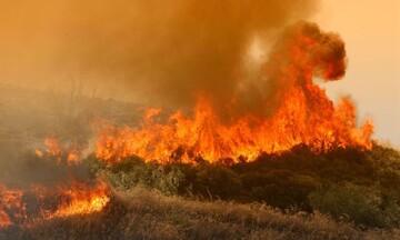 ΓΓΠΠ - Προσοχή: Πολύ υψηλός κίνδυνος πυρκαγιάς την Τετάρτη - Ποιες περιοχές κινδυνεύουν