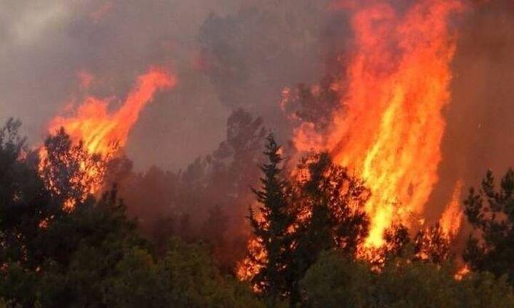 ΓΓΠΠ - Προσοχή: Σε ποιες περιοχές υπάρχει πολύ υψηλός κίνδυνος πυρκαγιάς την Τετάρτη