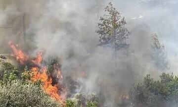 Τώρα: Φωτιά στο Καλέντζι Κορινθίας